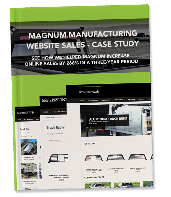 Magnum website sales case study.